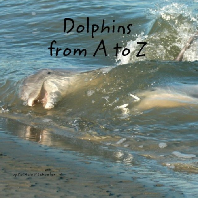 Dolphins from A to Z