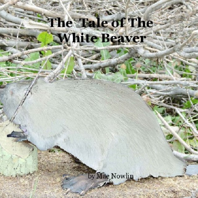 The Tale of The White Beaver