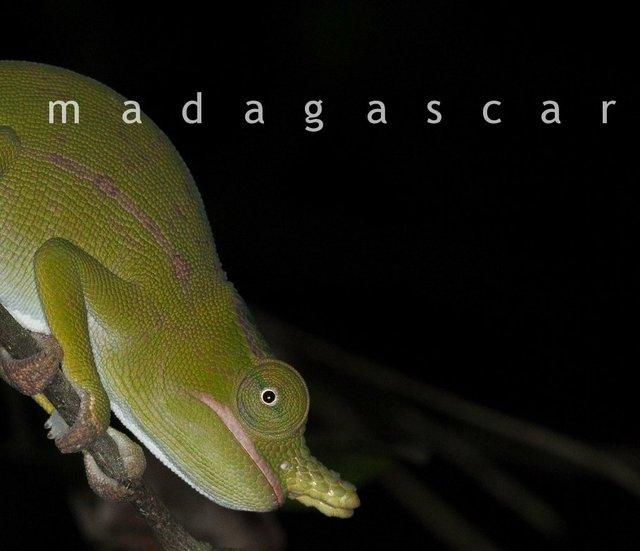 Madagascar eBook