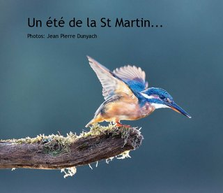 Un t de la St Martin...