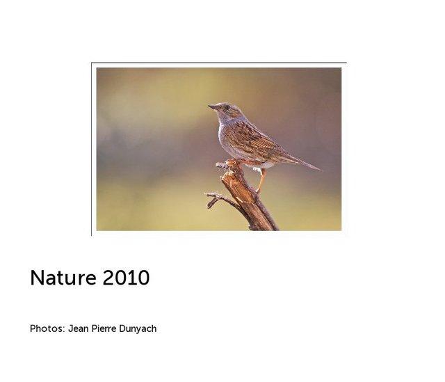 Nature 2010