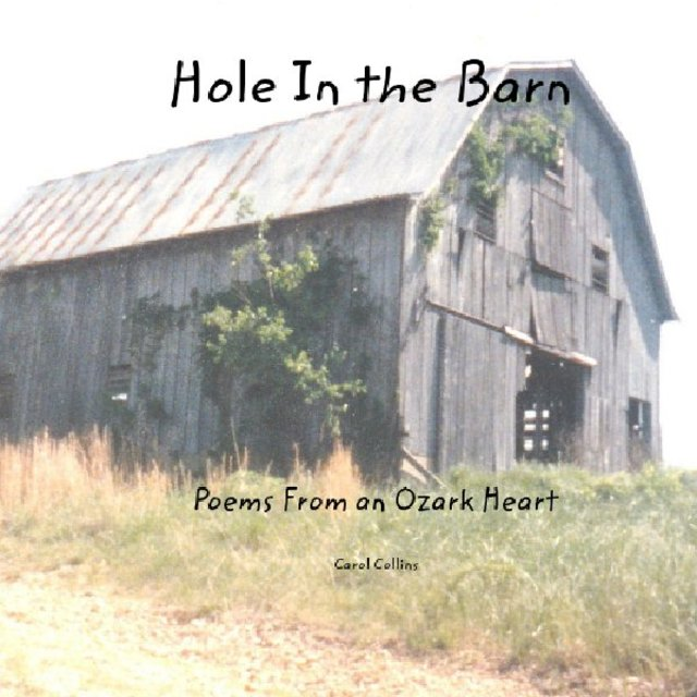 Hole In the Barn