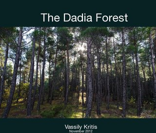 The Dadia Forest
