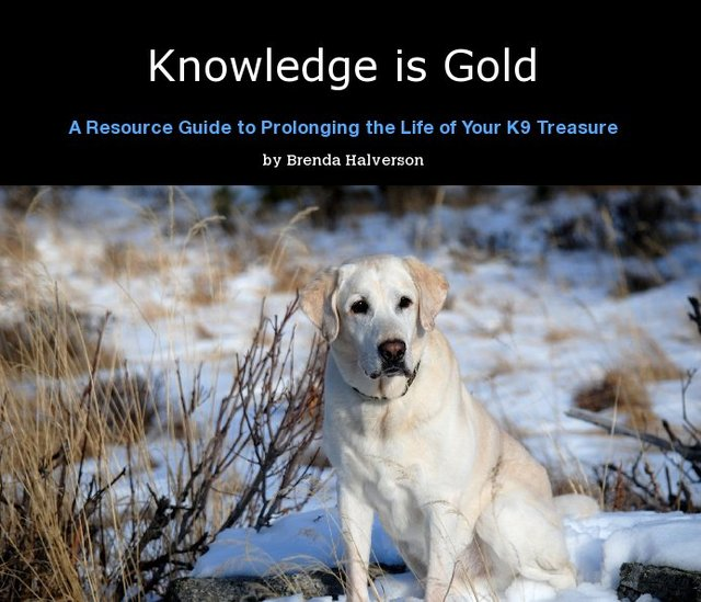 Knowledge is Gold