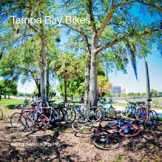 Tampa Bay Bikes