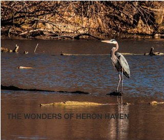 The Wonders of Heron Haven