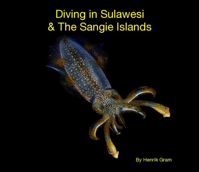 Diving in Sulawesi & The Sangie Islands