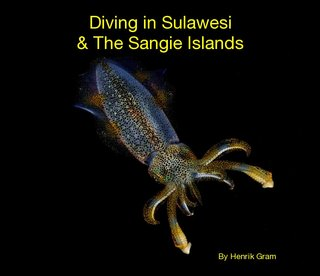 Diving in Sulawesi &amp; The Sangie Islands