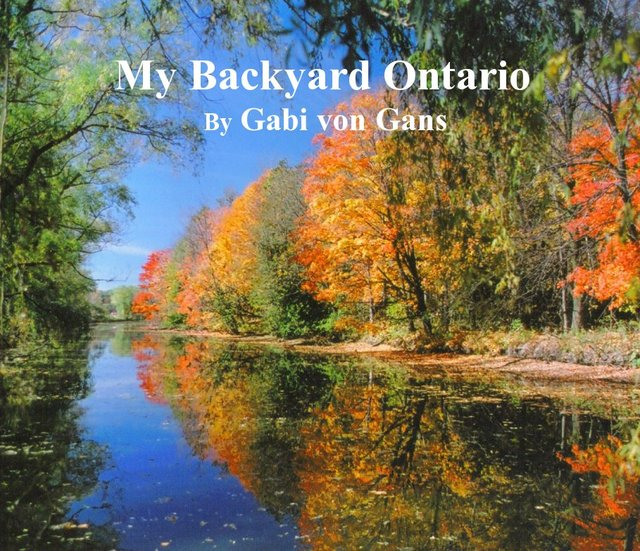 My Backyard Ontario By gabi von gans