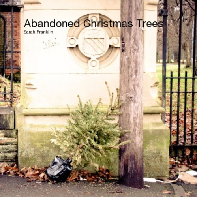 Abandoned Christmas Trees Sarah Franklin