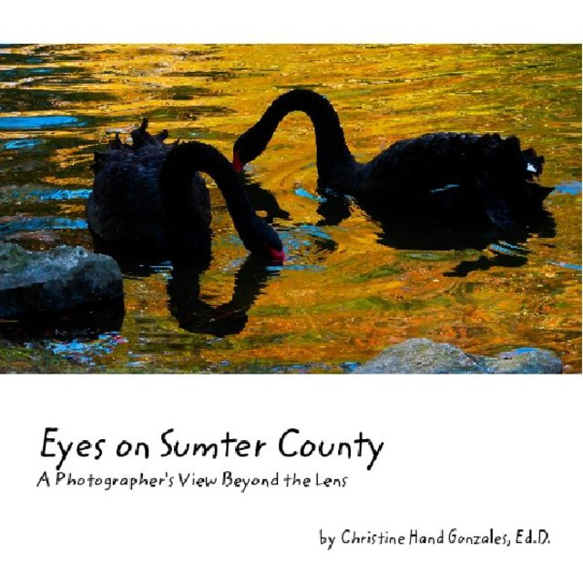 Eyes on Sumter County -  A Photographer's View Beyond the Lens