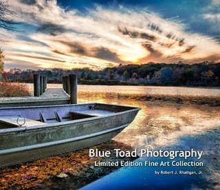 Blue Toad Photography