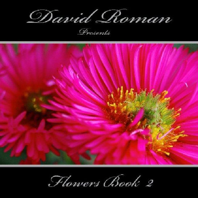 David Roman  presents Flowers 2