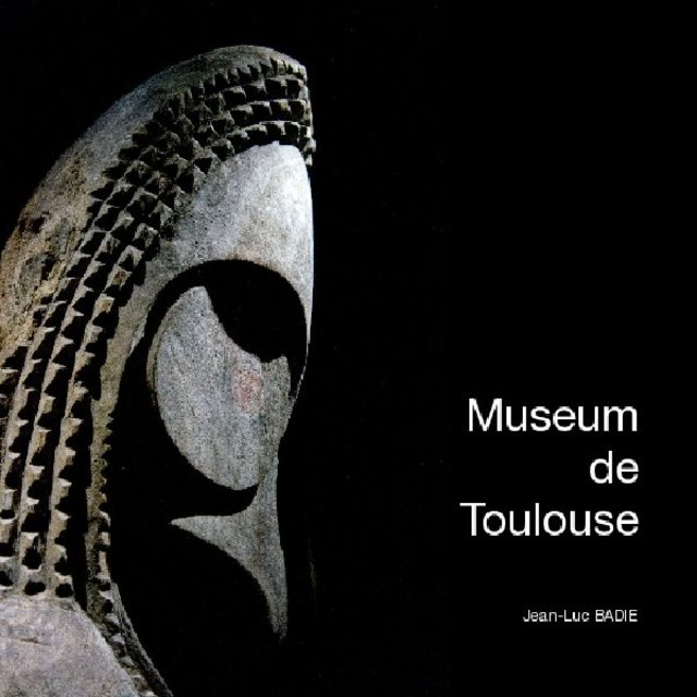 Museum de Toulouse