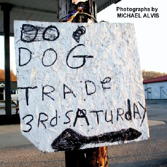 DOG TRADE