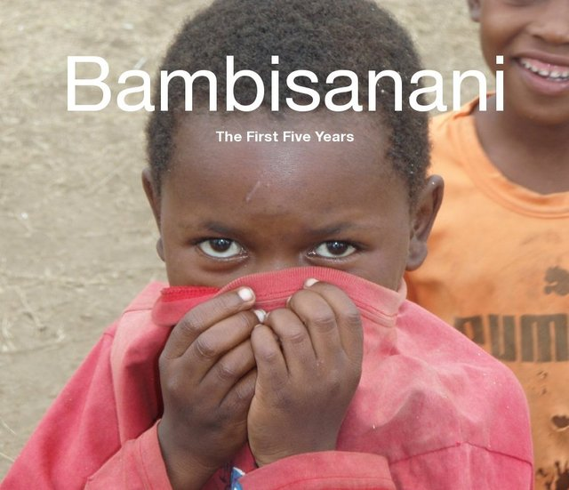 Bambisanani: The First Five Years