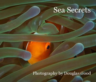Sea Secrets Photography by Douglas Good