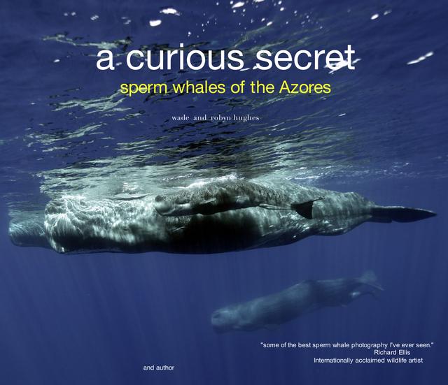 A Curious Secret: