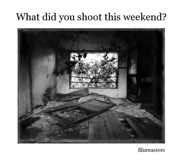 What did you shoot this weekend?
