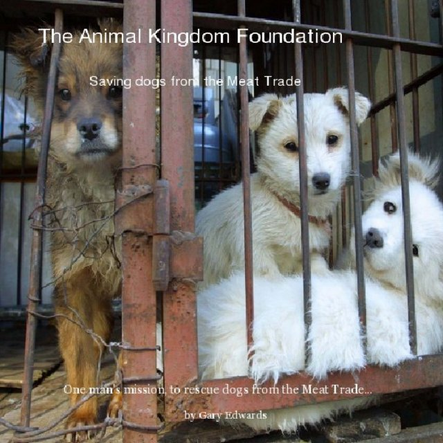 The Animal Kingdom Foundation