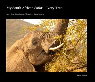My South African Safari - Ivory Tree