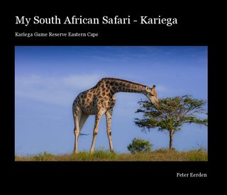 My South African Safari