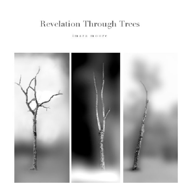 Revelation Through Trees