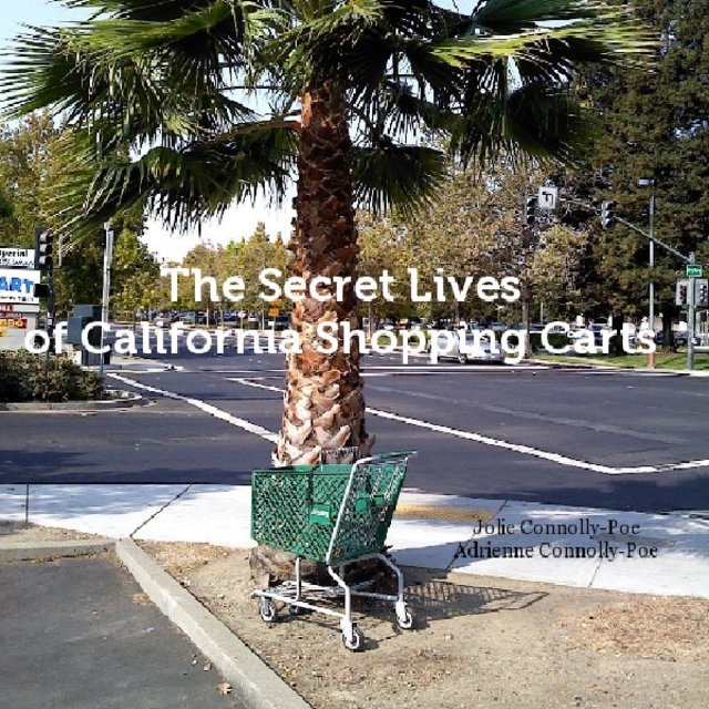 The Secret Lives of California Shopping Carts