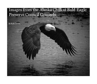 Images from the Alaska Chilkat Bald Eagle Preserve Council Grounds
