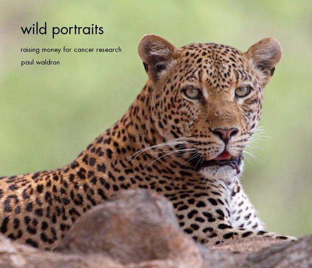 wild portraits