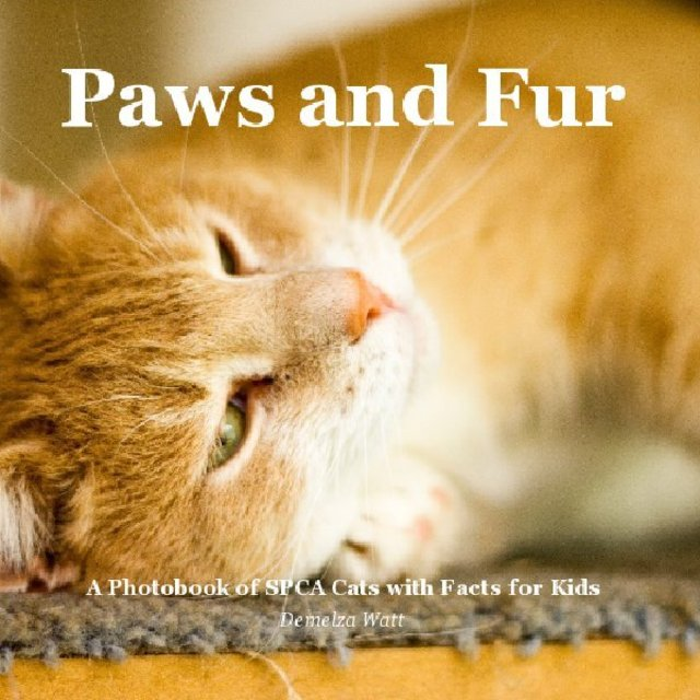 Paws and Fur