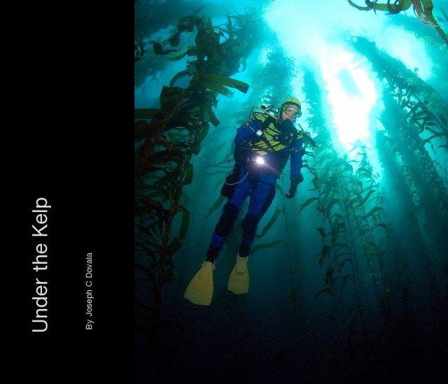 Under the Kelp