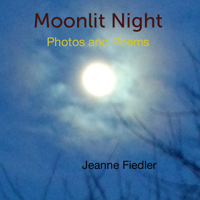 Moonlit Night Photos and Poems