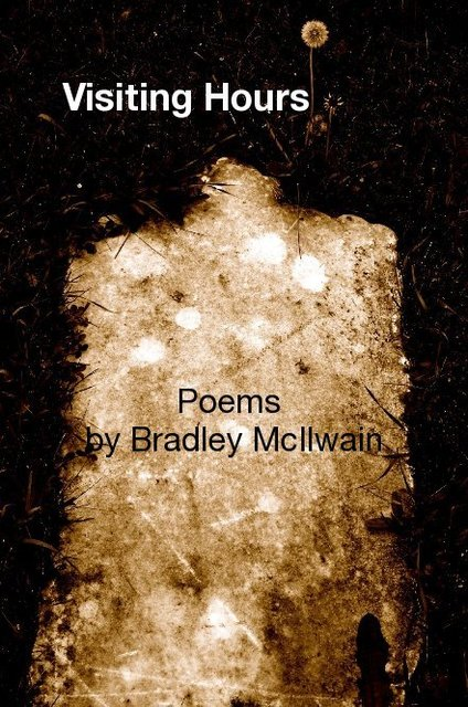 Visiting Hours Poems by Bradley McIlwain