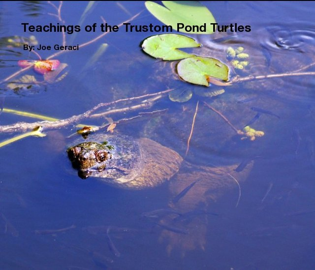Teachings of the Trustom Pond Turtles
