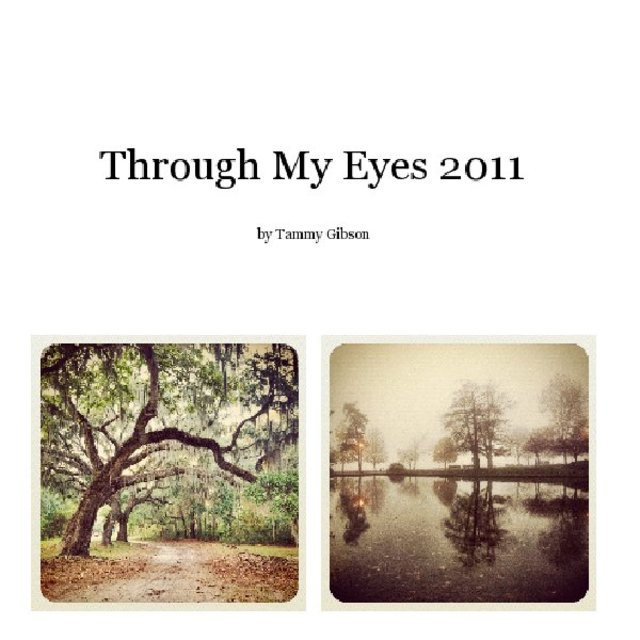 Through My Eyes 2011