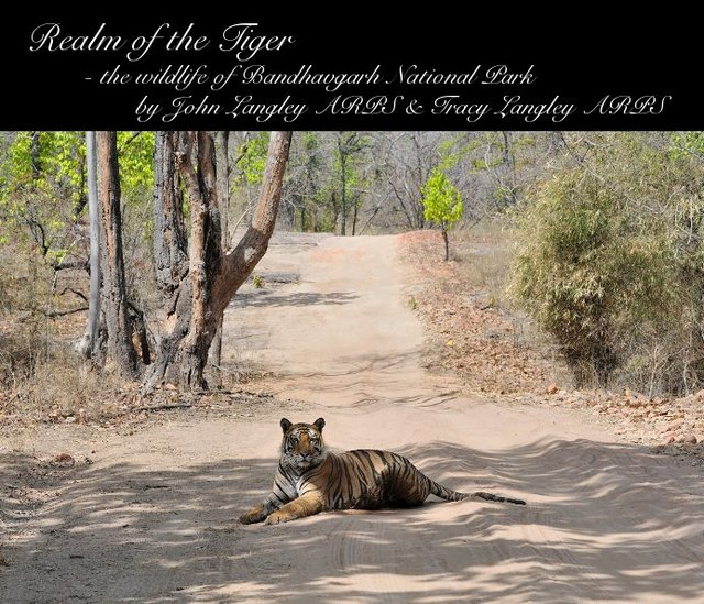 Realm of the Tiger