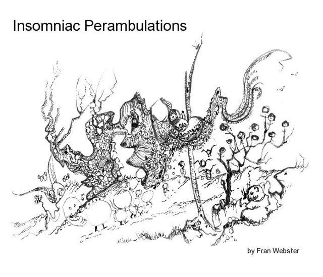 Insomniac Perambulations