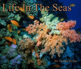 Life In The Seas