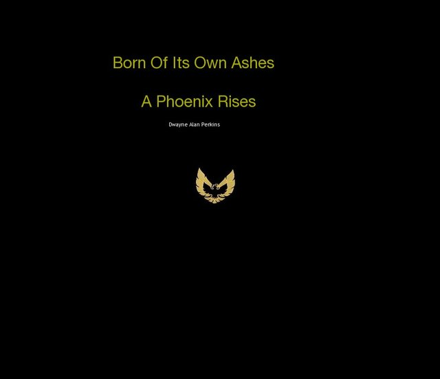 Born Of Its Own: Ashes A Phoenix Rises