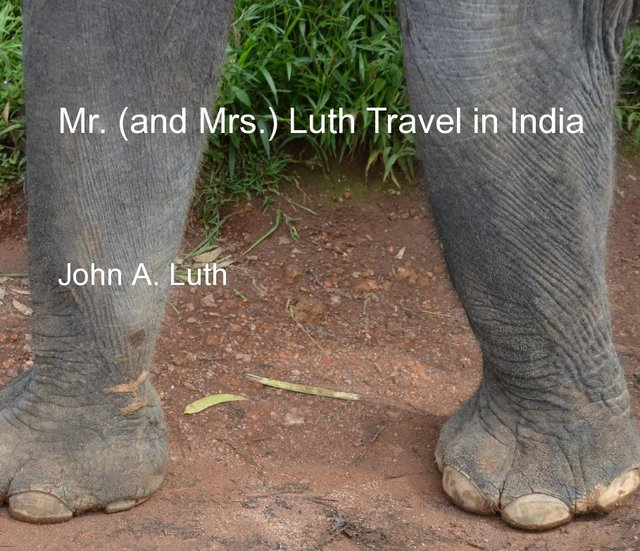 Mr. (and Mrs.) Luth Travel in India