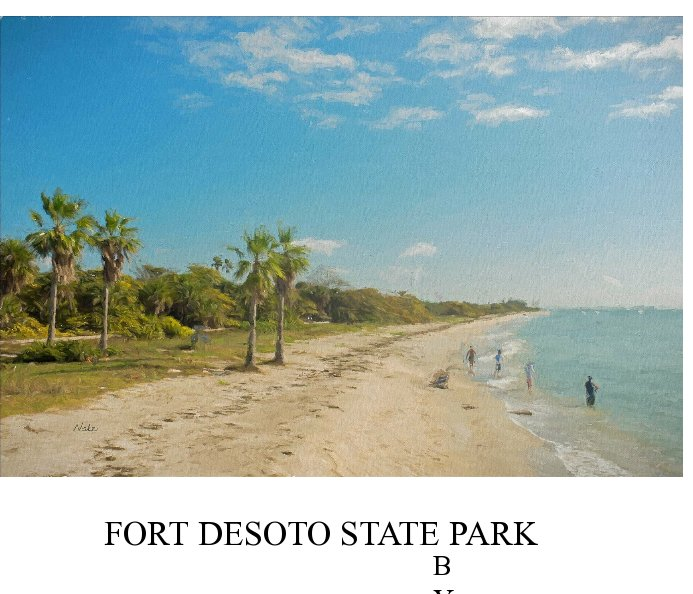 Fort Desoto State Park Ebook by Clyde Nabe