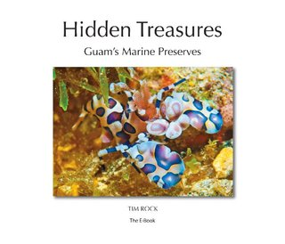 Hidden Treasures (Enhanced)