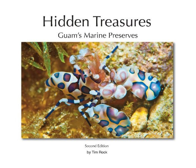 Hidden Treasures, Second Edition