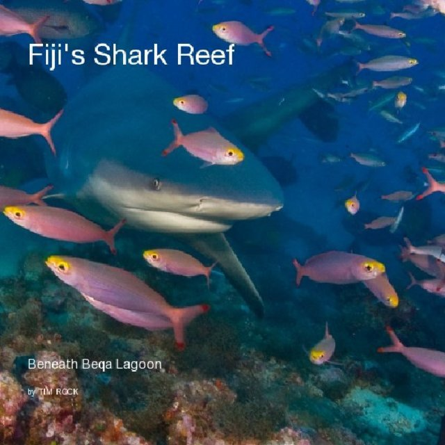 Fiji's Shark Reef