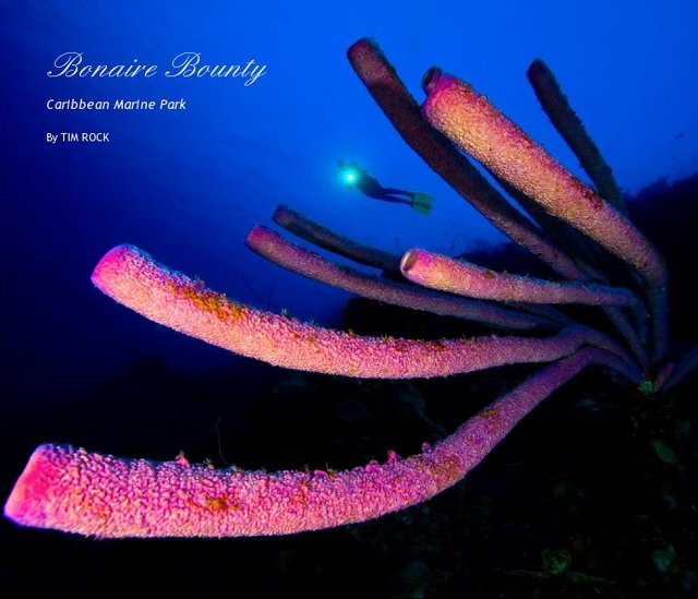 Bonaire Bounty