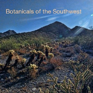 Botanicals of the Southwest