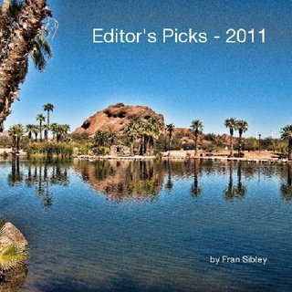 Editor&#x27;s Picks - 2011