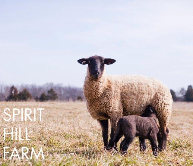 Spirit Hill Farm