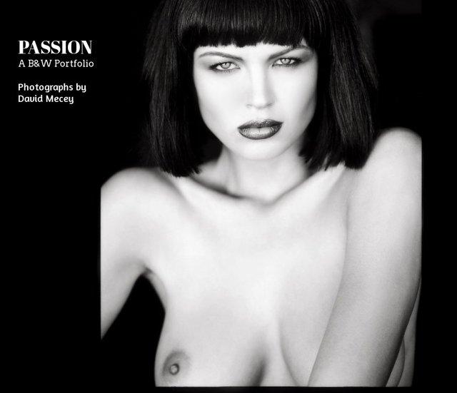 PASSION A B&W Portfolio-Photographs by David Mecey